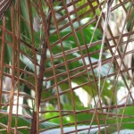 Palm mesh